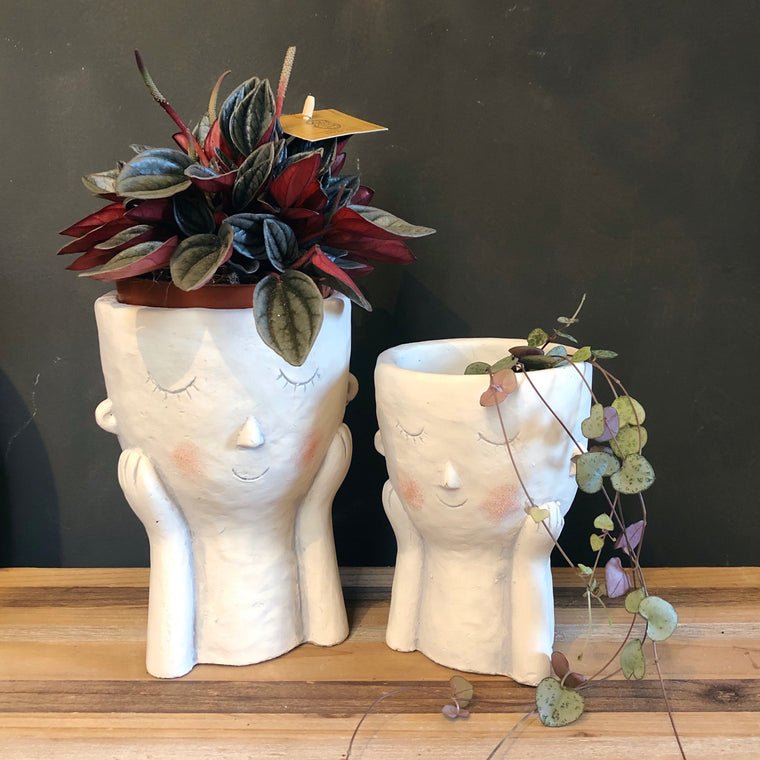Blushing Face Planter - 2 Sizes