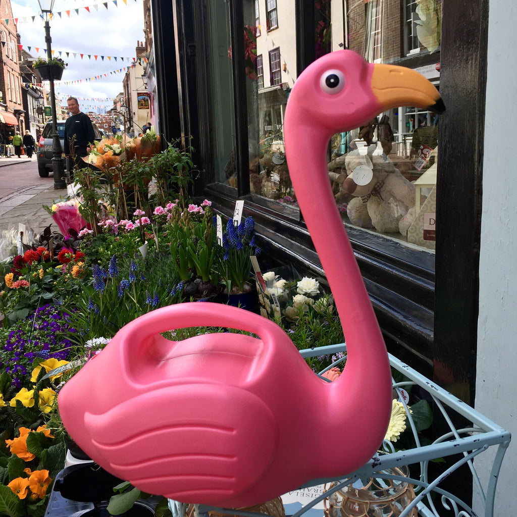 Flamingo Watering Can