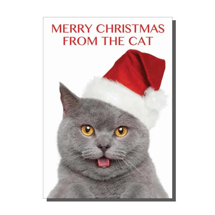 Merry Christmas From The Cat Christmas Card