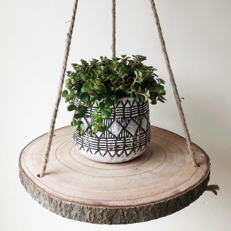 Tree Slice Hanging Shelf