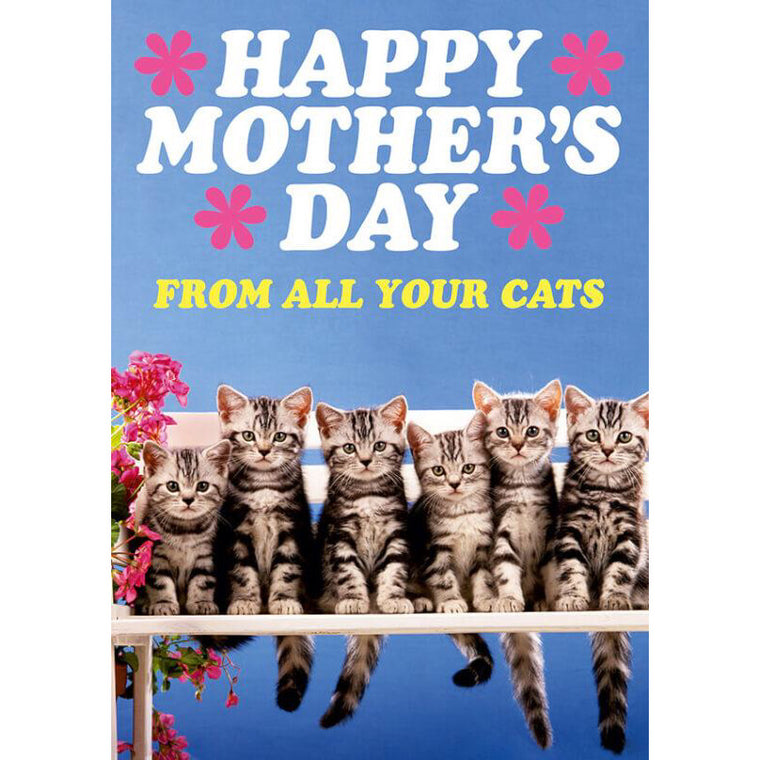 Happy Mother's Day From All Your Cats Card