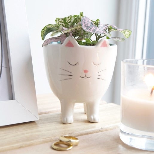 Standing Cat Planter Plant Pot