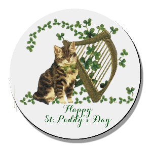 St. Paddy's Day Kitty