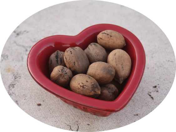 Pecans Certified Heart-Healthy by American Heart Association