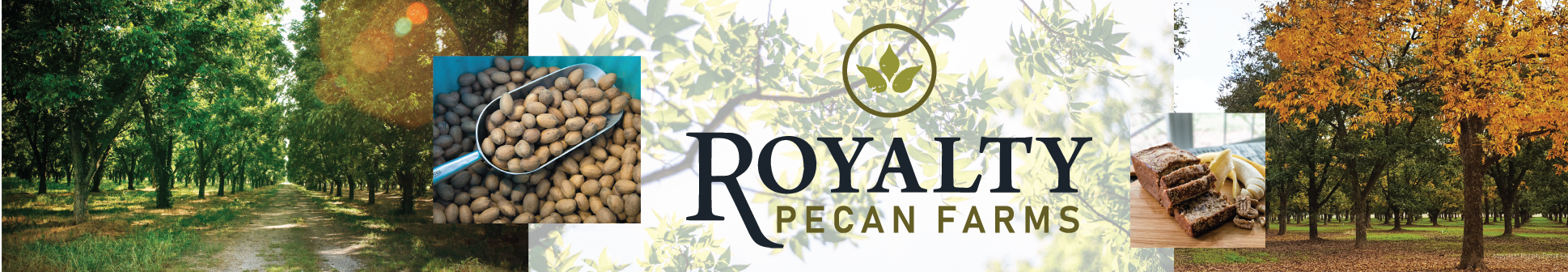 Enjoy gourmet food, wine, music, orchard tours, local artists, and other family fun at the Annual Royalty Pecan Harvest Festival! | Free admission all day