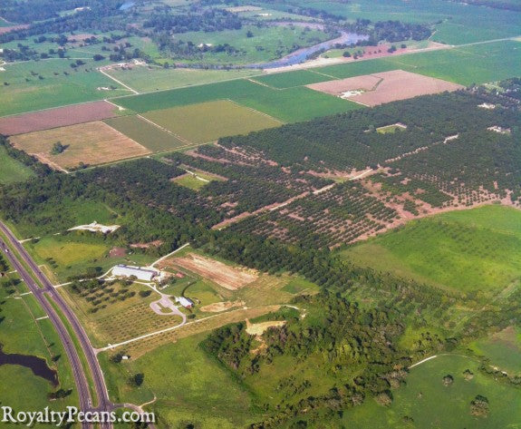 Aerial view of Royalty Pecan Farms in Caldwell, Texas