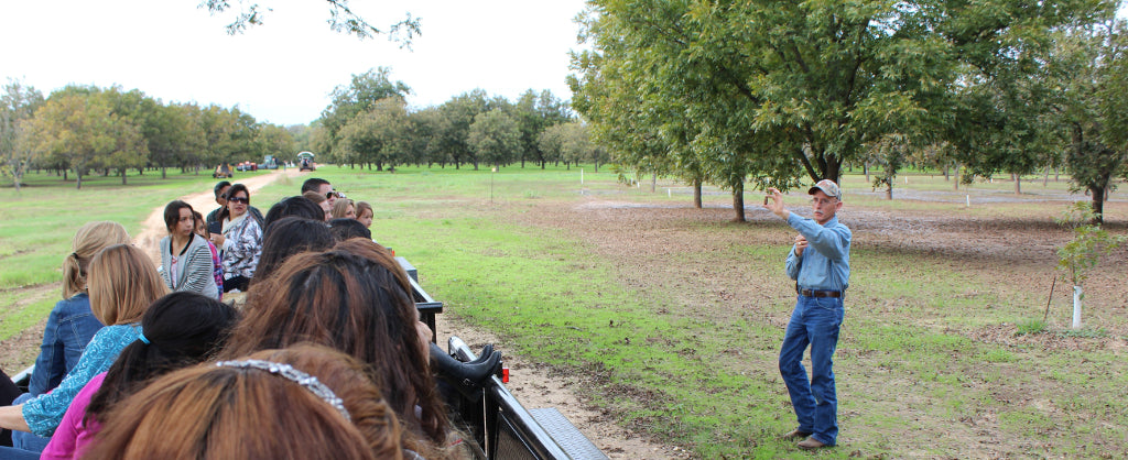Saturday Orchard Tours at Royalty Pecan Farms