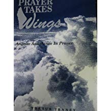 Prayer Takes Wings by Thetus Tenney