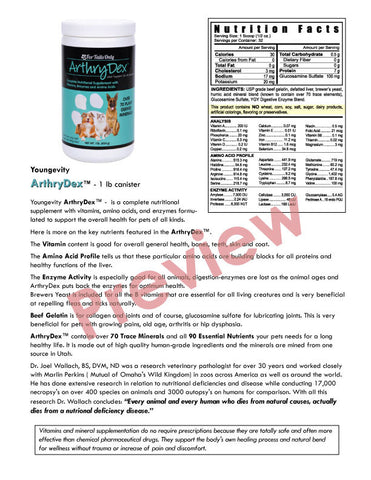 {$0.99} Download Only: Arthrydex Flyer PDF