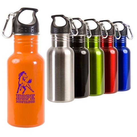 17 oz Stainless Steel Water Bottle with Carabiner