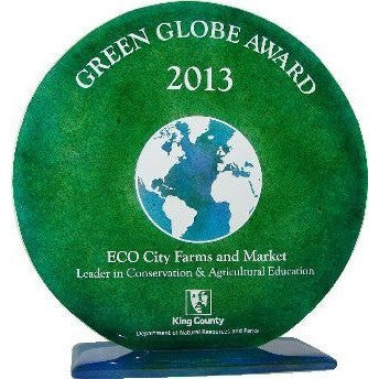 "10"" Round Glass Award with Globe"