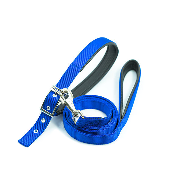 Dog Collars, Harnesses, and Leashes