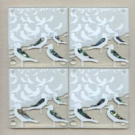 NZ Seagulls Coasters
