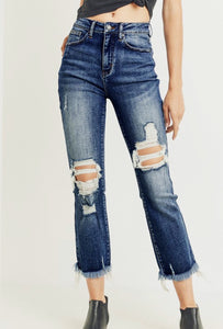 The Adventurer Distressed Jean