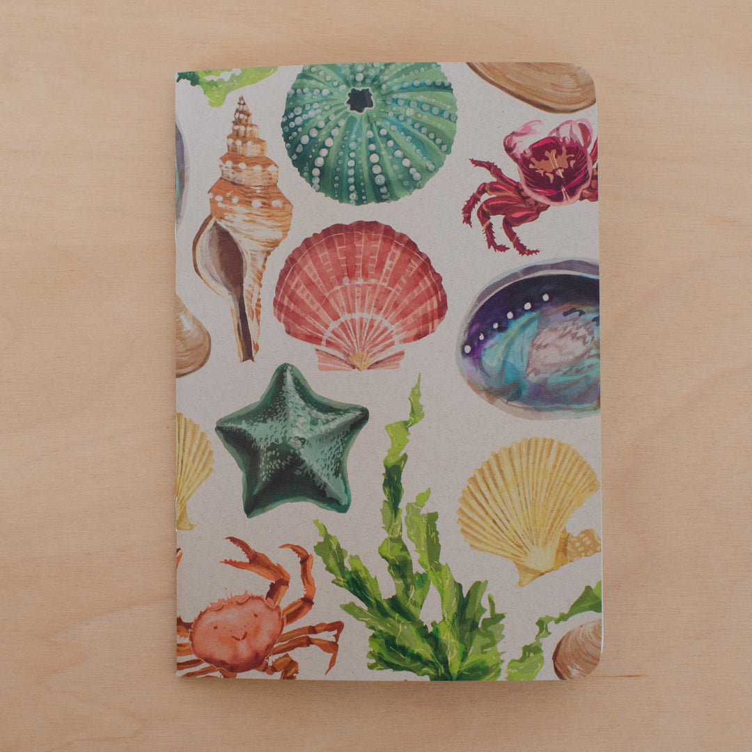 Painted Beach Notebook