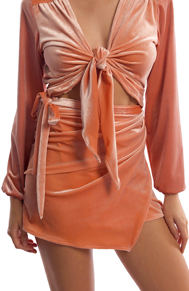 PARIS SKIRT IN PEACH VELVET