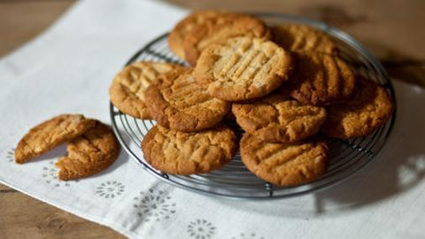 Paleo Ginger Nut Cookies Recipe paleochoice