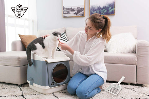 One for pet Free Cabin Litter Box