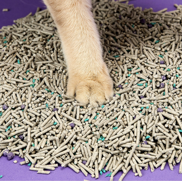 Petkit Everclean Flushable 5 in 1 Mixed Cat Litters 4 bags