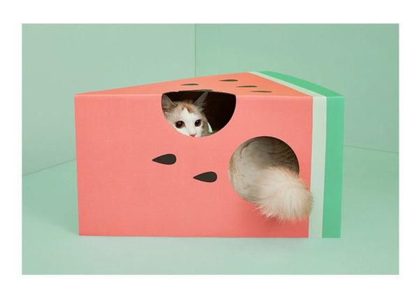 Vetreska Cheese / Watermelon Cat Scratching Box
