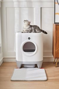 PETKIT Pura X Smart Litter Box (Pre-order Item)