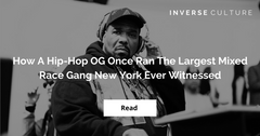 How A Hip-Hop OG Once Ran The Largest Mixed Race Gang New York Ever Witnessed
