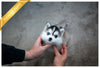 (Purchased by Tahnoon) Piper - Pomsky. F - Rolly Teacup Puppies - Rolly Pups