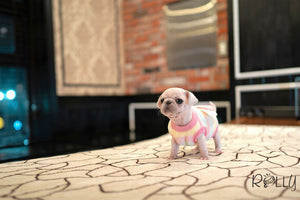 (PURCHASED by Simpson) SNOW FLAKE - Pug. F - ROLLY PUPS INC