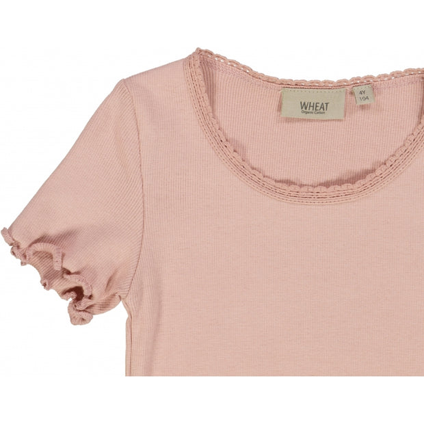 Wheat Ribbet T-skjorte Lace SS Jersey Tops and T-Shirts 2270 misty rose