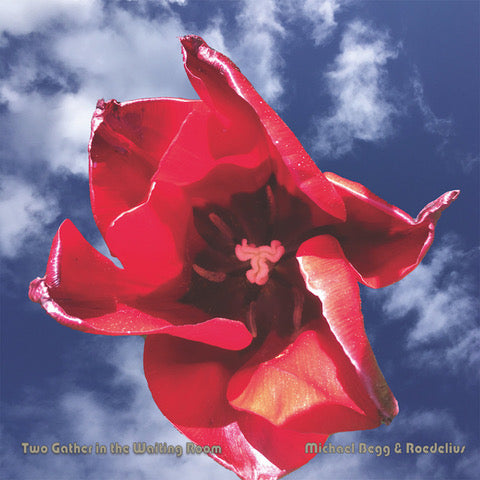 Michael Begg & Hans Joachim Roedelius  'Two Gather In The Waiting Room' CD