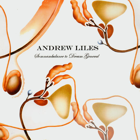 Andrew Liles  'Somnabulance to Dream General'  CD