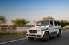 Mercedes-Benz G-Class Gelandewagen Edition 1 AMG sports stripes Decal Graphics