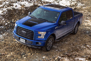 Ford F-150 2015-2016 hood graphics side stripe decal sticker Ford Performance