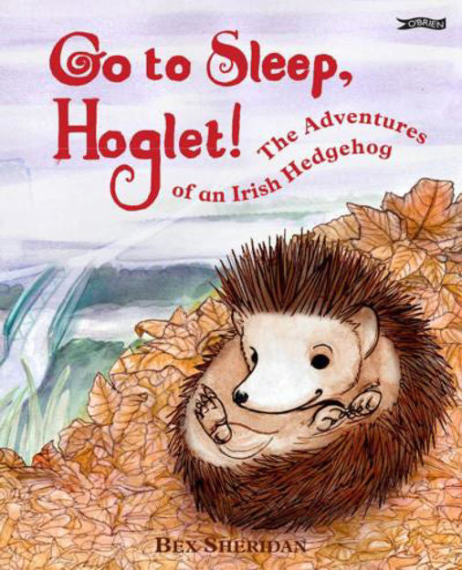 Go To Sleep, Hoglet!