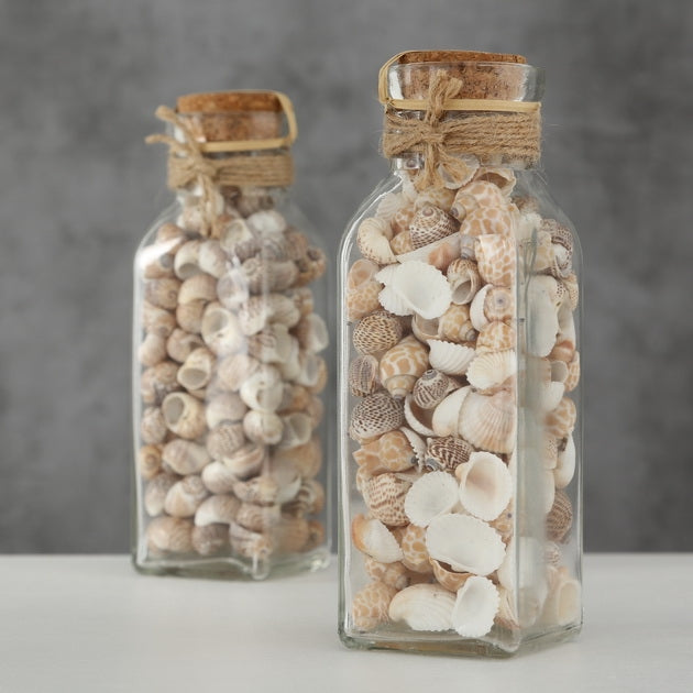 Decorative Seashell Bottle