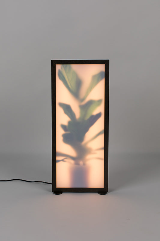 Floor Lamp Grow L
