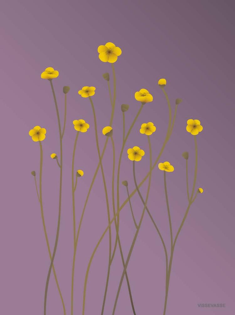 Buttercup Purple Greeting Card