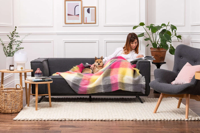 Woman & Dog wrapped up in Urban Check Mohair Throw On Grey Couch