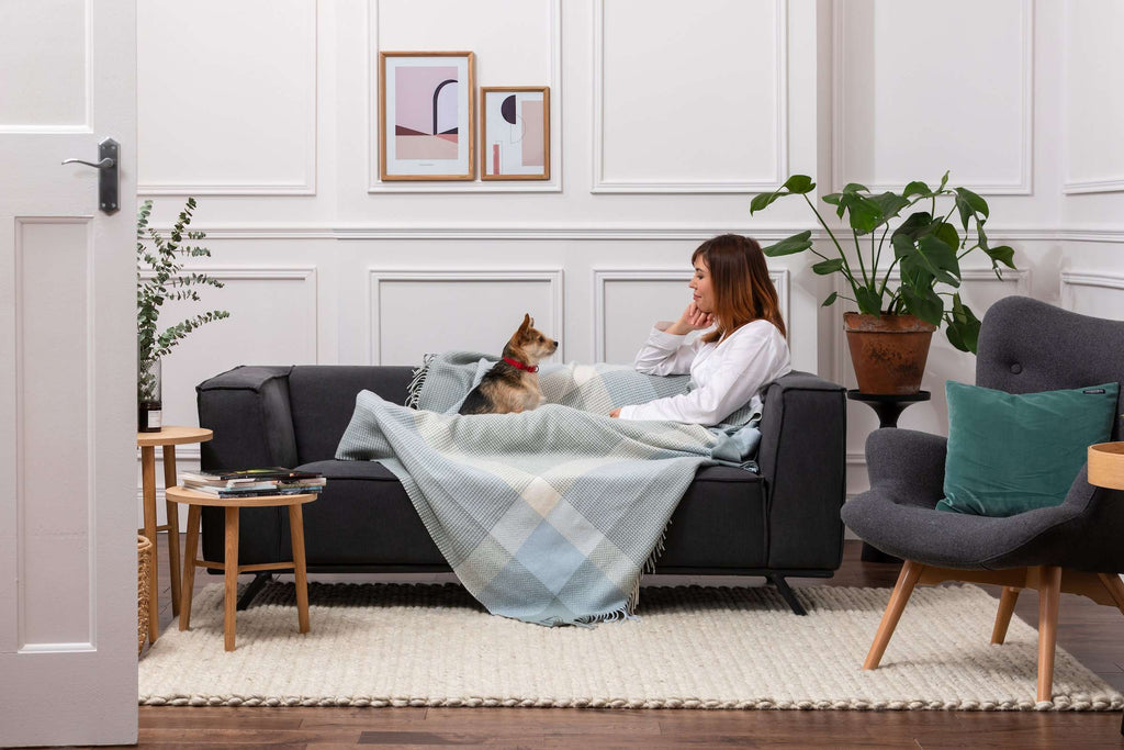 Woman and dog cuddled up with Foxford's Dusty Blue & Aqua Cashmere