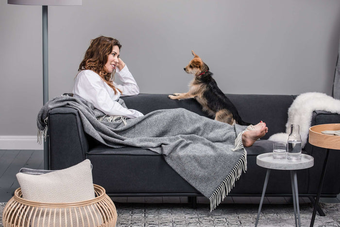 Women and her Dog cosy on a grey couch with Foxford's Oxford and White Herringbone Throw