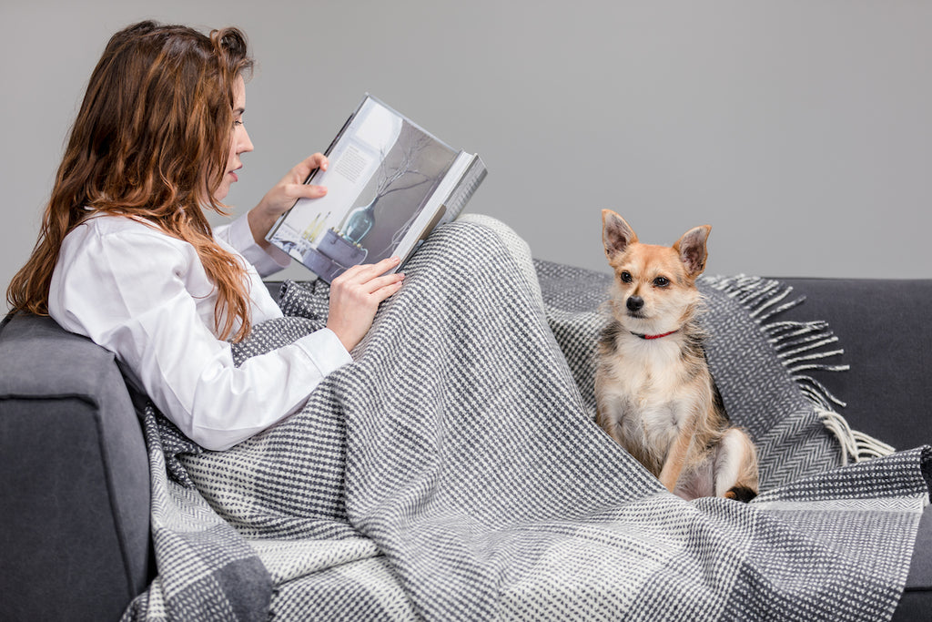 Woman & Dog wrapped up in Grey & White Large Check Cashmere Throw