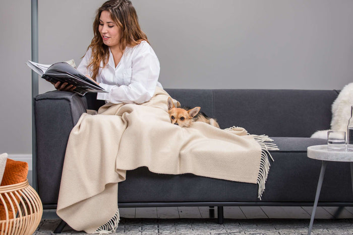 Women and Dog curled up on grey couch wrapped in Foxford's White and Bone Herringbone Throw