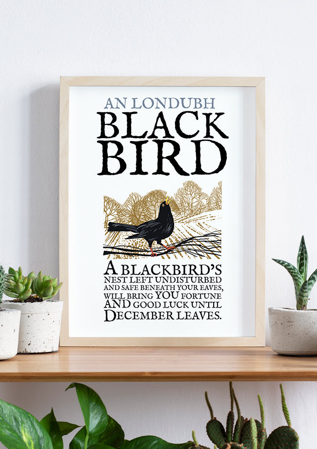 Roger O'Reilly Birds of Ireland - The Blackbird Print