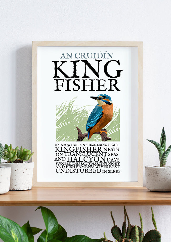 Roger O'Reilly Birds of Ireland - The Kingfisher Print