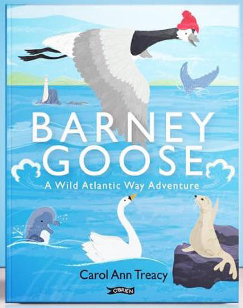 Barney Goose - A Wild Atlantic Way Adventure