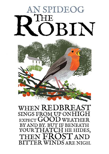 Roger O'Reilly Birds of Ireland - The Robin Print