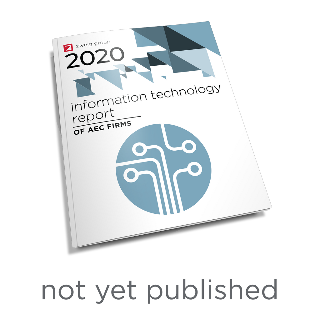 2020 Information Technology Survey Report