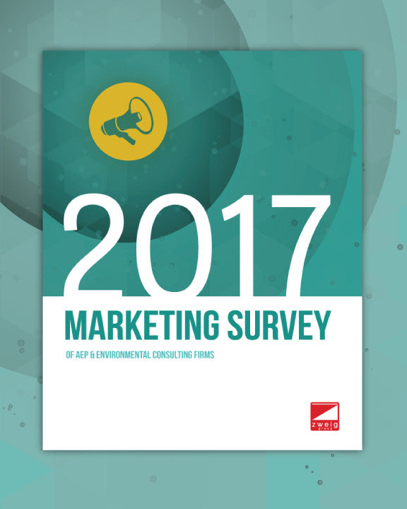 2017 Marketing Survey