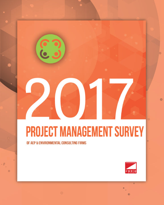 2017 Project Management Survey