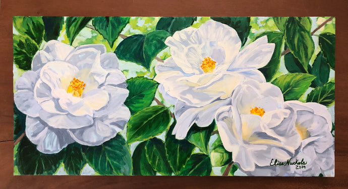 Four White Camellias